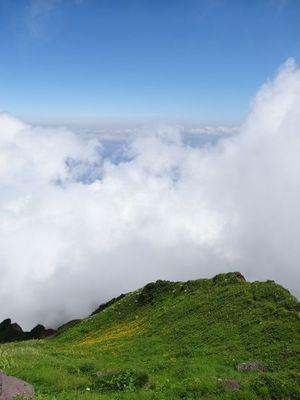 雲の切れ間からボタンキンバイ群生.jpg